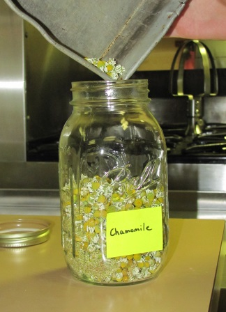 chamomile-storageblog.jpg