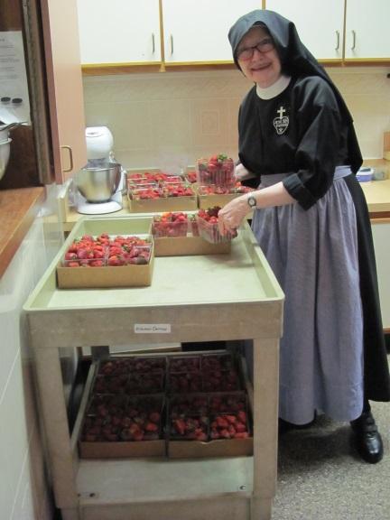 nunstrawberriesbblog2016