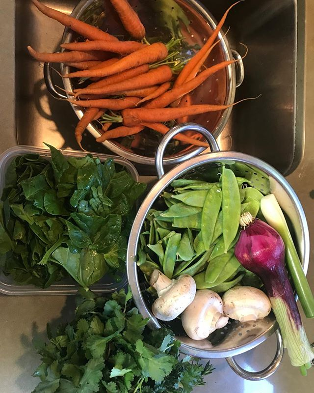 Farm fresh veggies. Homemade bone broth. A little comforting chicken soup is good for a cold but can it help a broken heart? #chachacookingclub #FLOSSYfood #farmfresh #chickensoup #lompoclocal #souphealshearts #lovewins. #homecooking