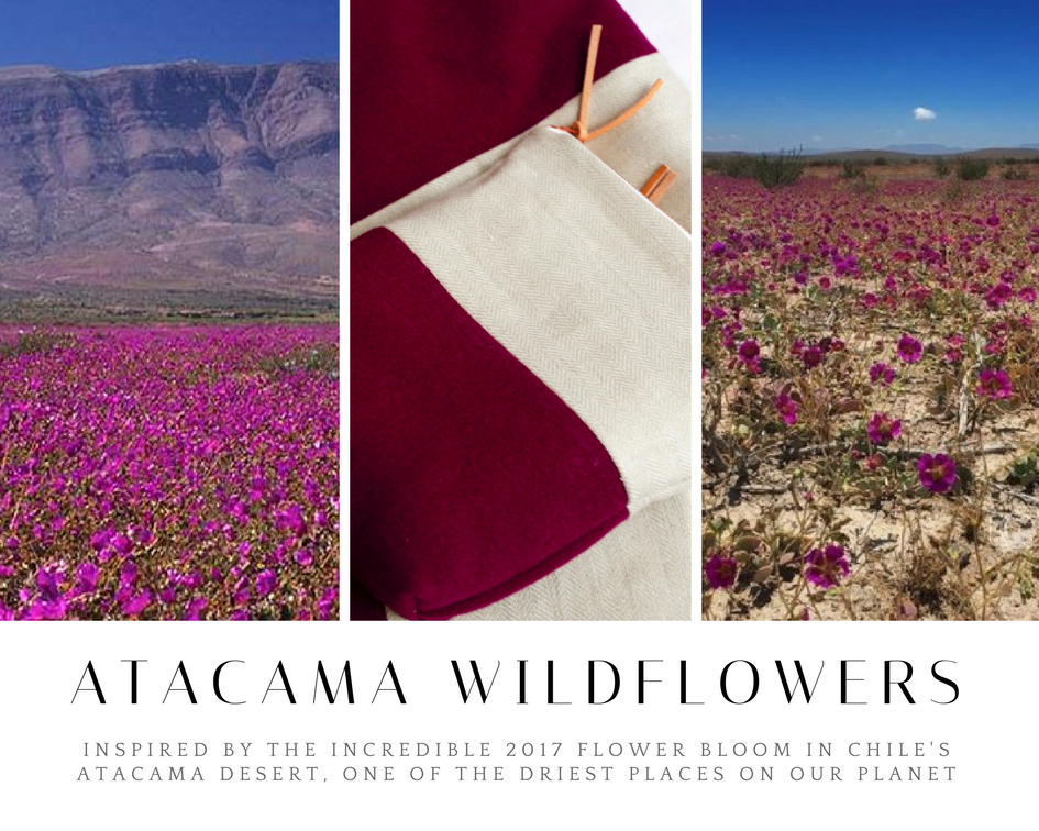 Atacama Wildflowers.png