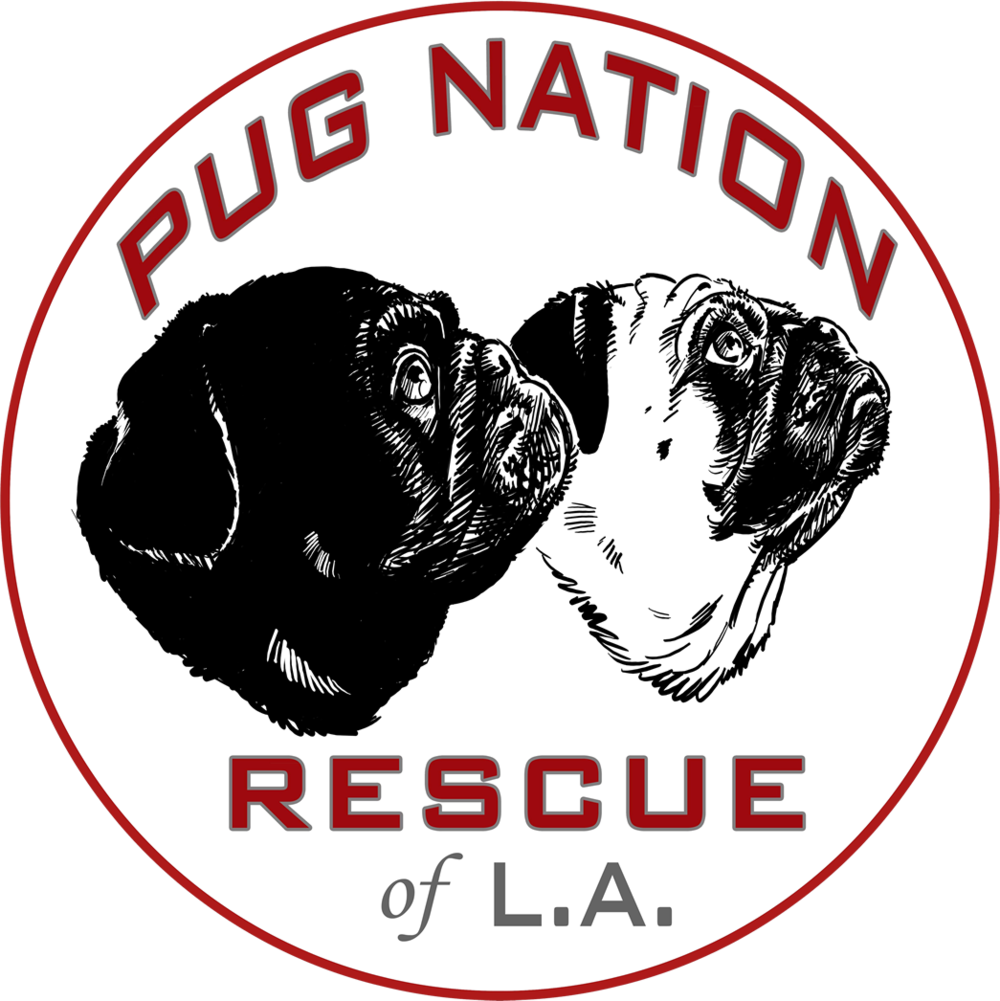 Pug Nation Rescue of LA