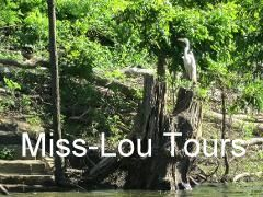 miss-lou-tours2.JPG