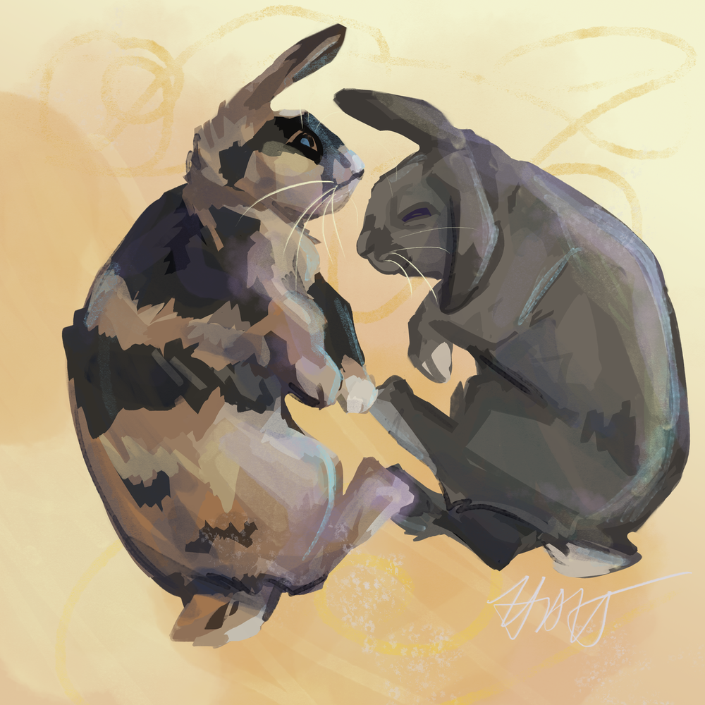 Lop Bunny Commission
