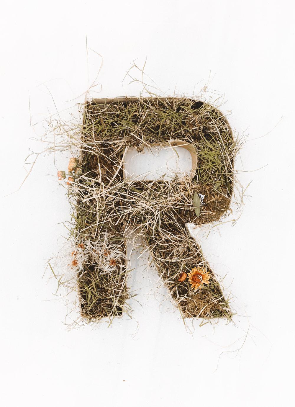r (1 of 1).jpg