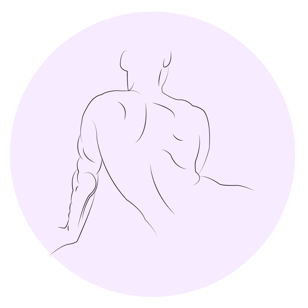 SpinalDrawing-01.png