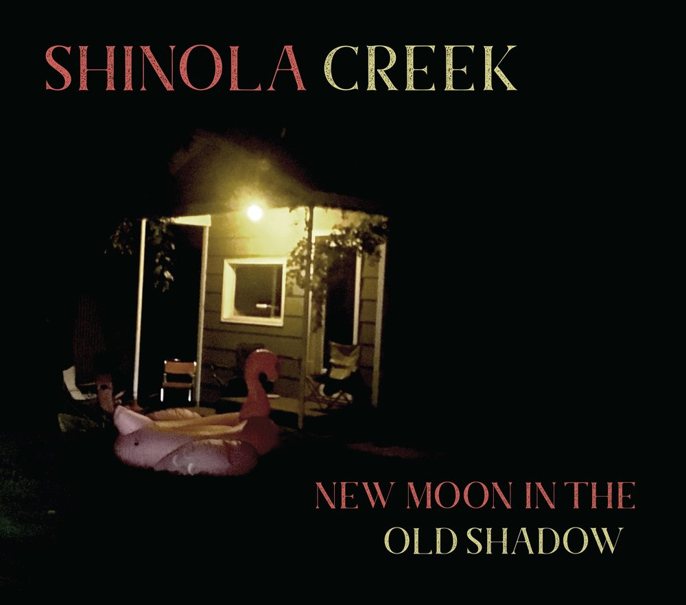 New-Moon-in-the-Old-Shadow-COVER.jpg
