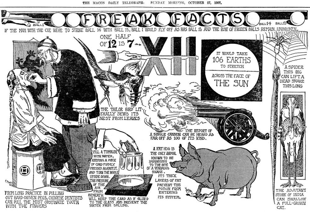 Freak-Facts1.jpg