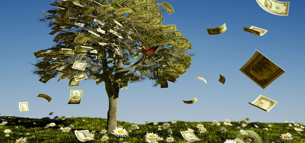 Money Does Grow on Trees   by Dr. Tammy