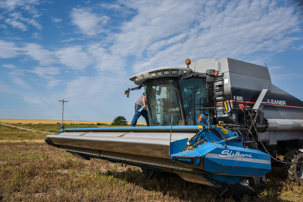 Indigo Agriculture | Plant Microbiome Technology 0005.jpg