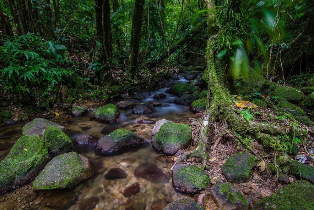 20170627-Dominica-67-Edit.jpg