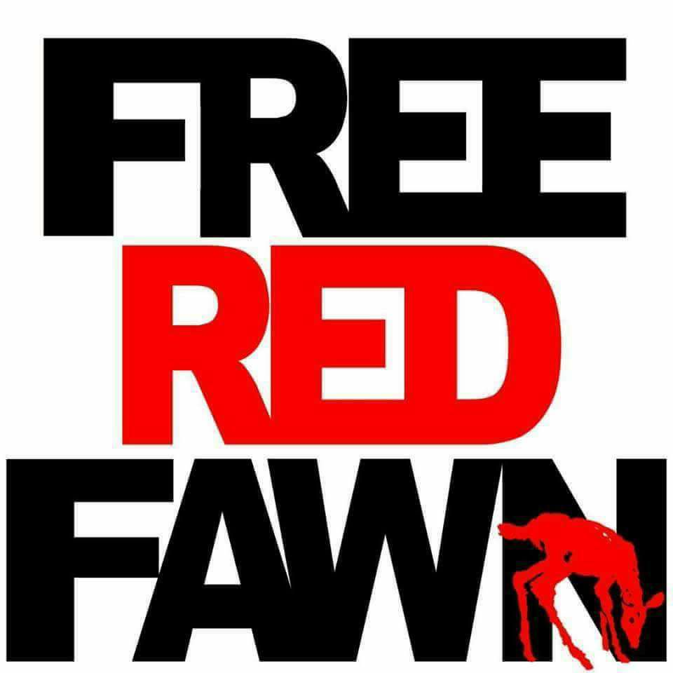 Stand With RedFawn