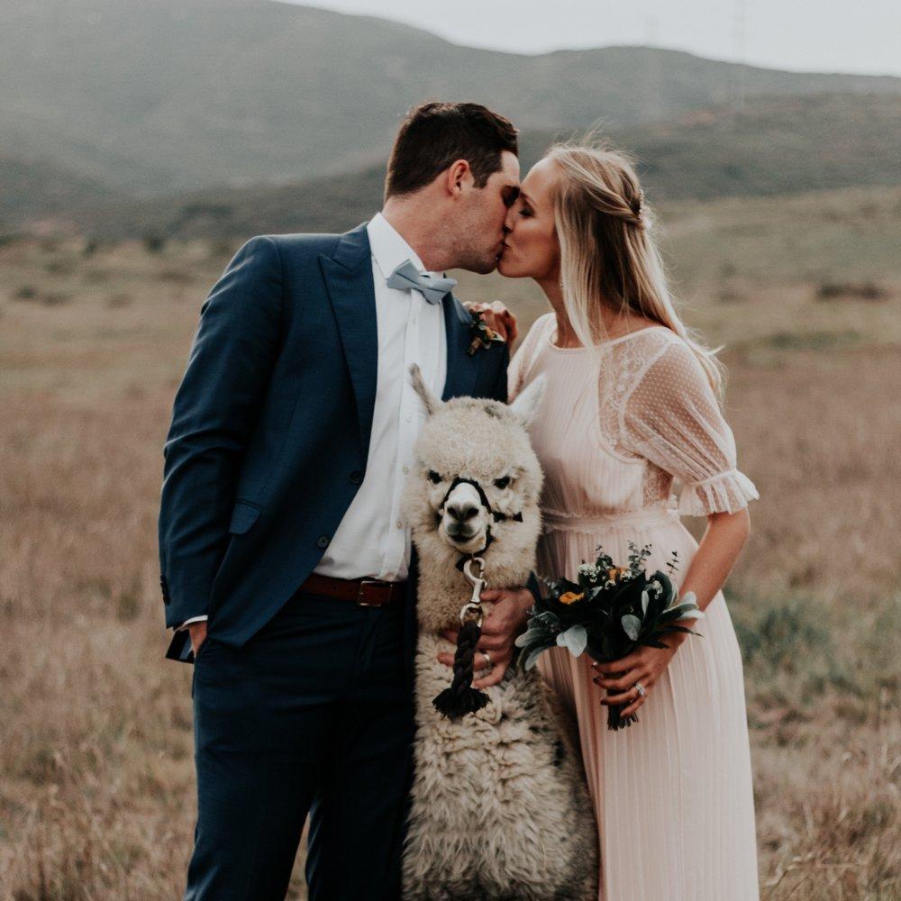 Weddings by Hannah Monroe.jpg