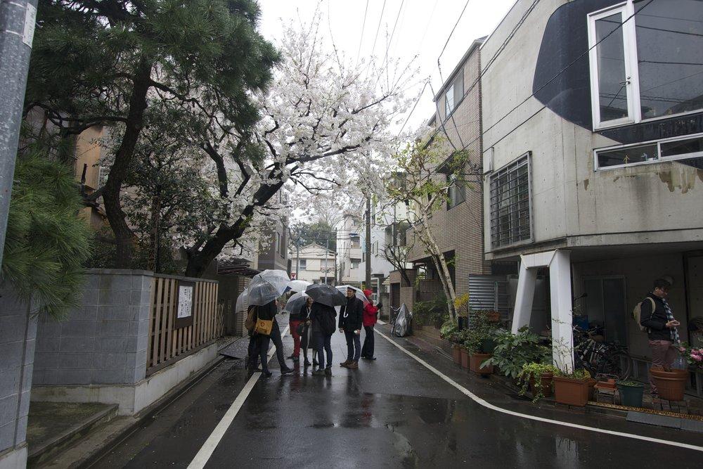 Suzuki House, Tokyo