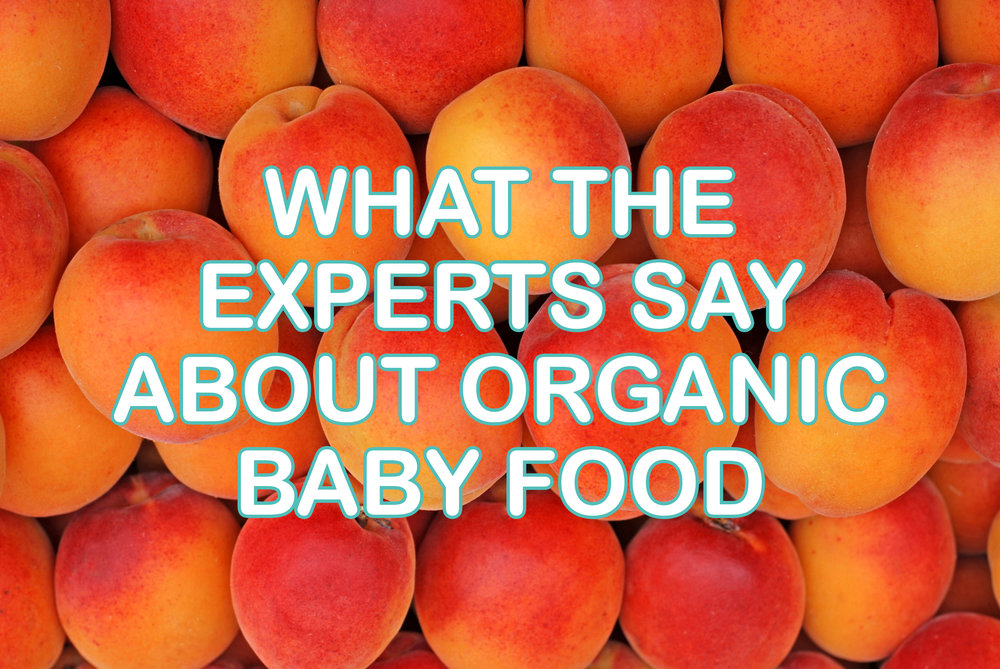 why-organic-baby-food-may-be-the-right-choice-for-your-family.jpg