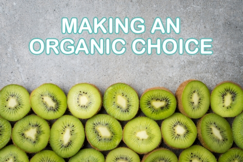 why-organic-baby-food-may-be-the-right-choice-for-your-family-1.jpg