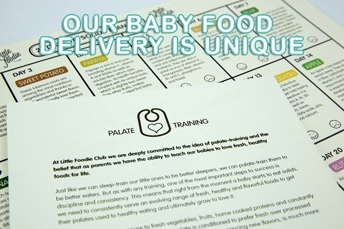 feeding-your-baby-is-easier-with-baby-food-delivery-1.jpg