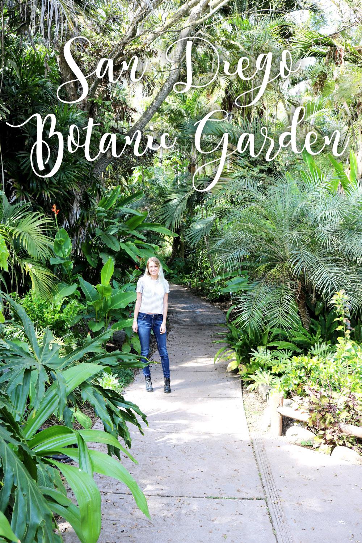 san diego botanic garden encinitas plants