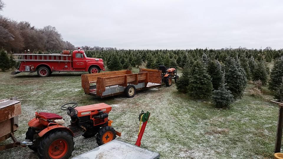Nordstrom's Tree Farm   Full-Service Experience
