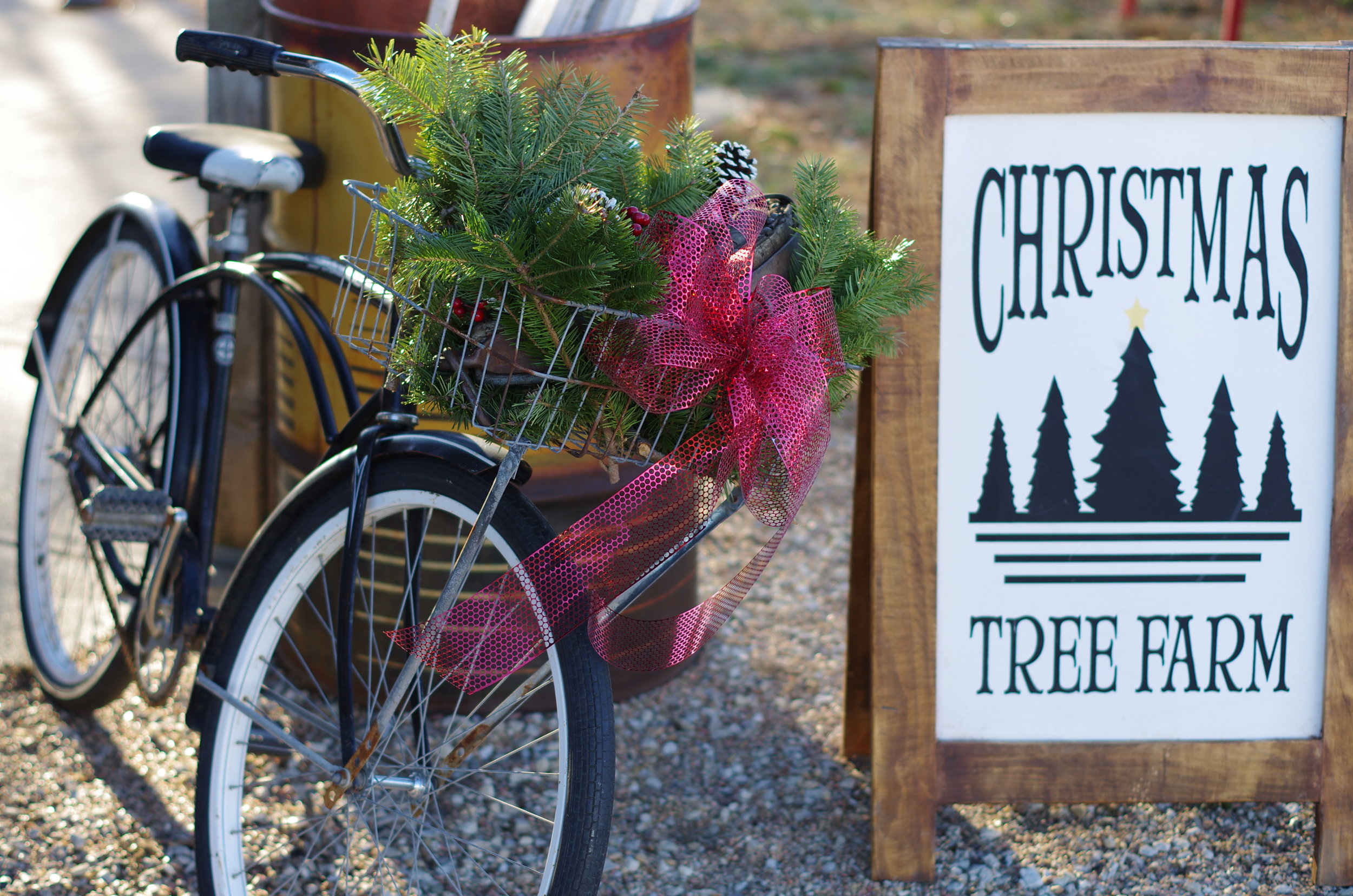 nordstroms tree farm rustic farm charm - Nordstrom Christmas Hours