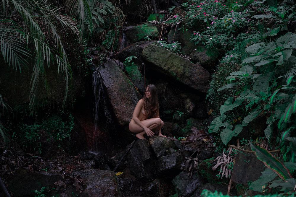 Jungle-1-4.jpg