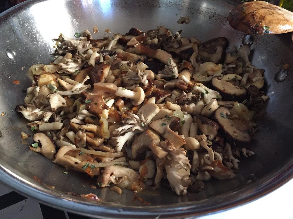 mushroommedley.jpg