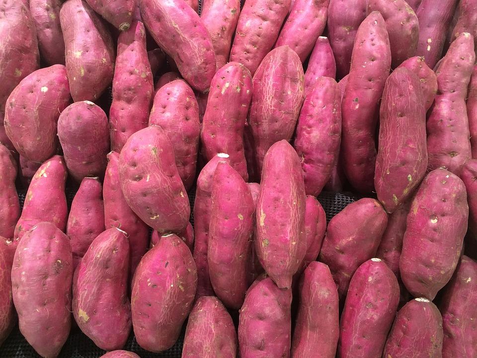 sweet-potato-1666707_960_720.jpg
