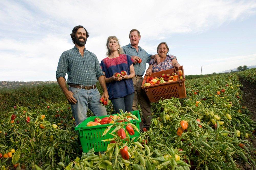 Full-Belly-Farm-owners-in-the-pepper-field.jpg