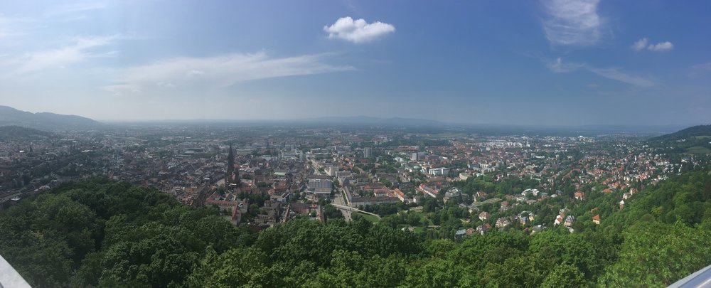 At the top of the viewpoint, looking over the Old Town of Freiberg.