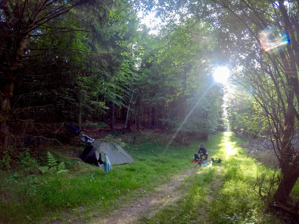 Free Campsite Challenge: Night Two. We were literally in the middle of the forest - there were midges and mosquitoes everywhere.