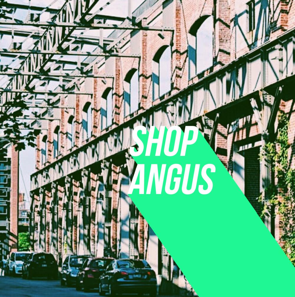 ShopAngus.PNG