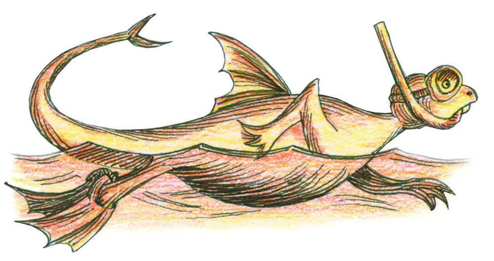Wasserdrachen - wer im Nebel navigiert, muss sich nachher nicht wundernsitzt ein Drache auf dem Ankerfährt kein Bötchen und kein Tankerein Drache schwimmt selten alleinwer nicht schwimmen kann, muss ein Boot habennur der frühe Drache fängt den Fischein See ohne Drachen ist wie eine Suppe ohne SalzWasserdrachen-Schimpfwörter:- Schönwetterdrache- Nichtschwimmbubi- Zahnlose Schwammattrappe