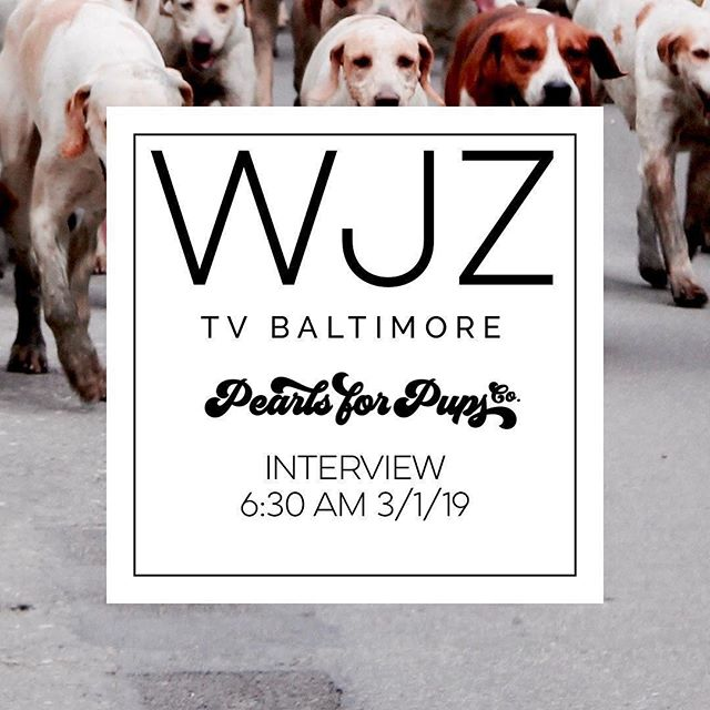 The Pearls for Pups interview will air on @wjztv tomorrow morning!