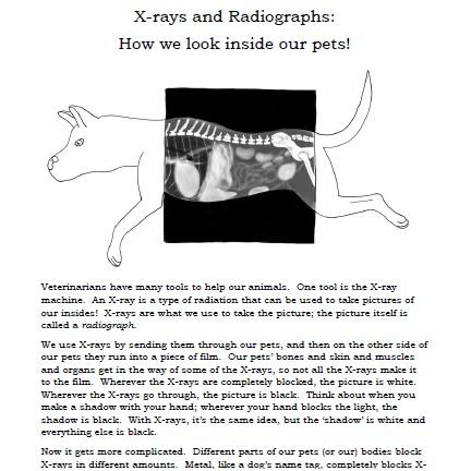 Xray and radiographs.jpg