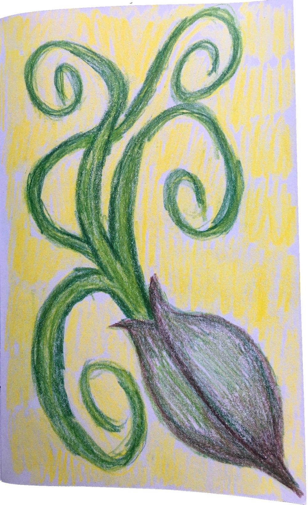 Karen drawing.JPG