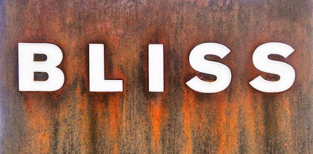 Bliss , Dinner  926 S. Presa Street, San Antonio, 78210  P 210-225-2547   Make a Reservation on OpenTable