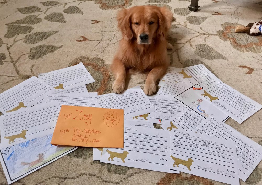 Zoey gets thank you letters from her class.
