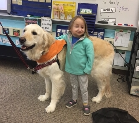 Student Specialized Support - In classes where reading is not the focus, our certified pet therapy teams provide comfort and support for children with special educational and developmental needs. These classes include Autistic Support, Multiple Disability Support, and Life Skills.
