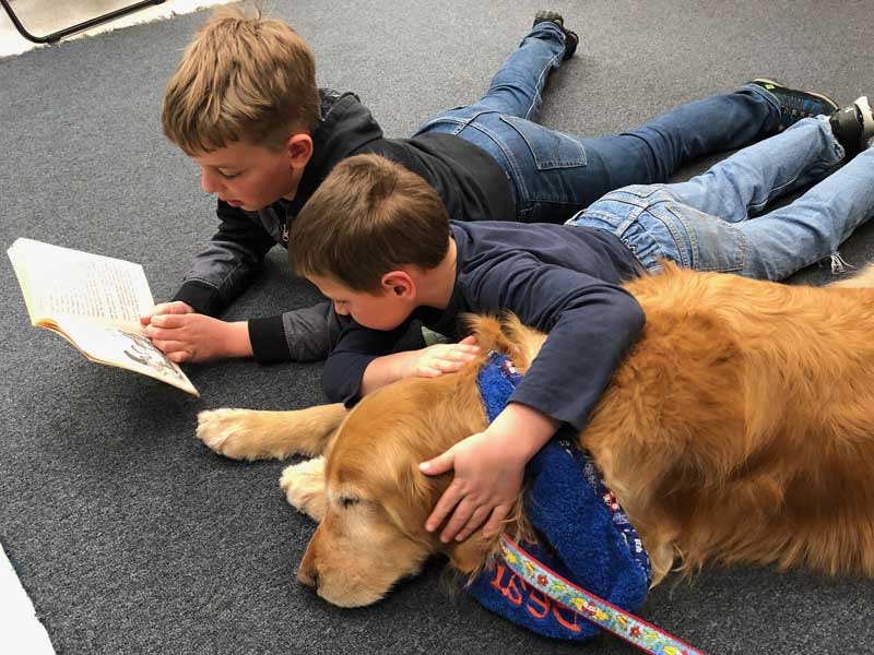 Elementary School Reading Inspiration - This is the Roxy flagship program where over 3,000 Central Bucks School District elementary students per week benefit from Roxy therapy team visits to help them become stronger readers.