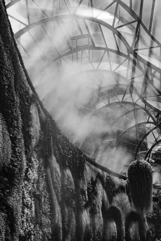 The Arc Glasshouse, Royal Botanic Gardens, Sydney, Australia, 2018