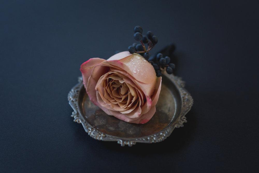 april-galina-photography-loulette-styled-photoshoot-gowanus-2.jpg