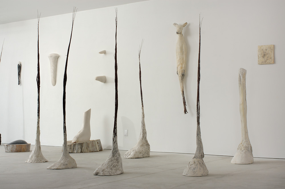 """Hooves,"" 2007 Installation"