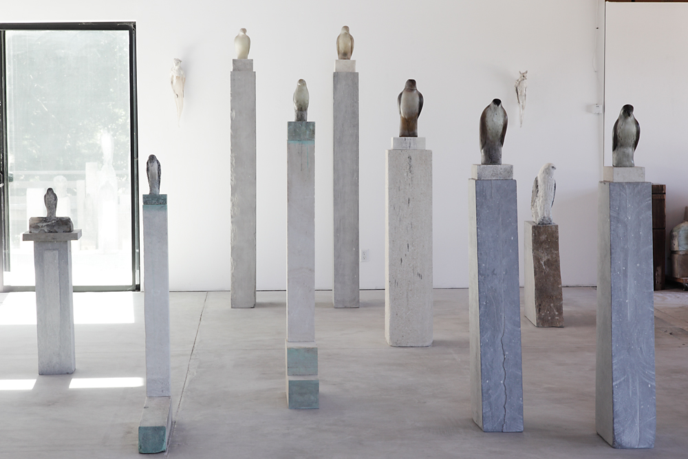 A Class of Birds Studio Installation, 2010