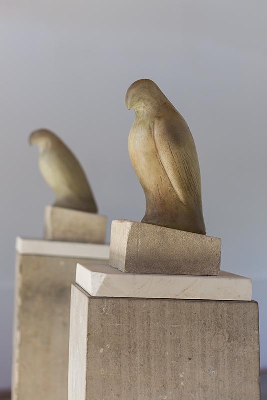 grey_white_birds-18_lg.jpg