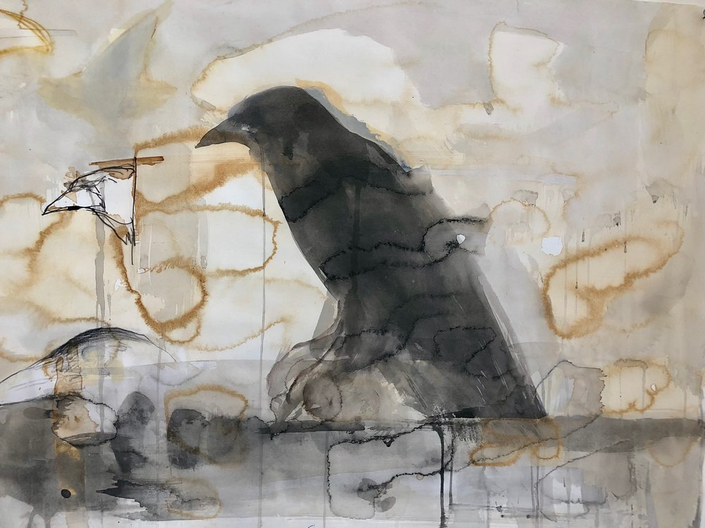 """Raven Beak Study"" 2016  Coffee, sumi ink and casein  22 x 30 inches"