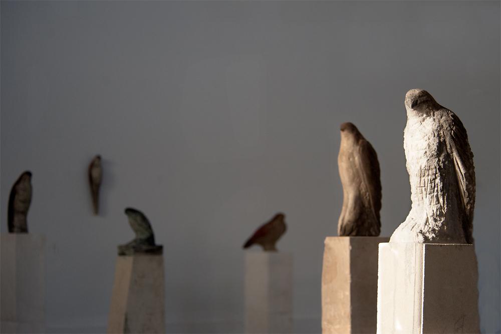 """""""Sebastian's Bird"""" Installation, 2013"""
