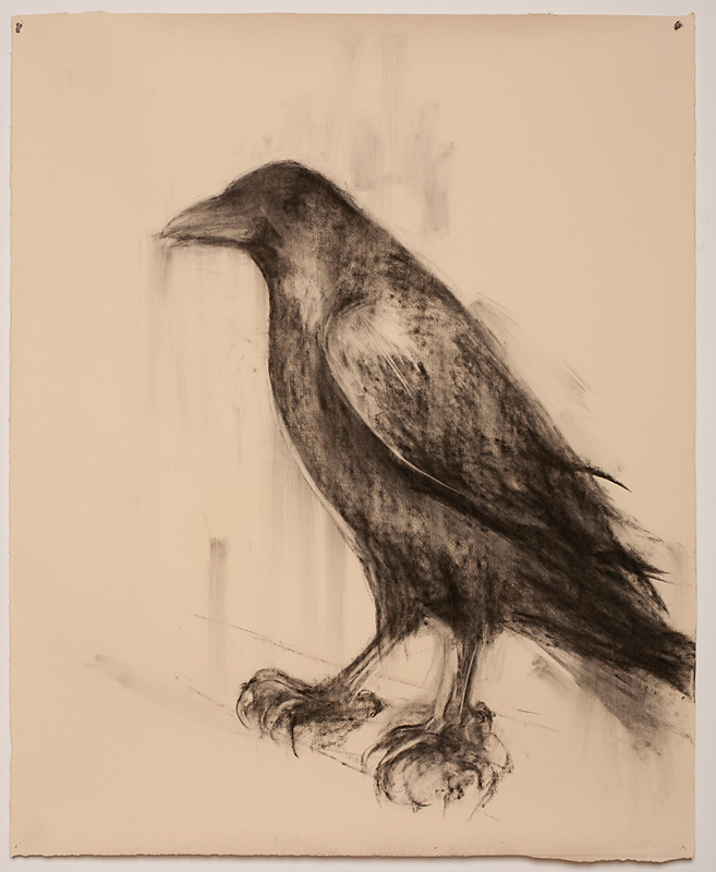 """Mama Raven,"" 2011 Charcoal on paper 52 x 42 inches"
