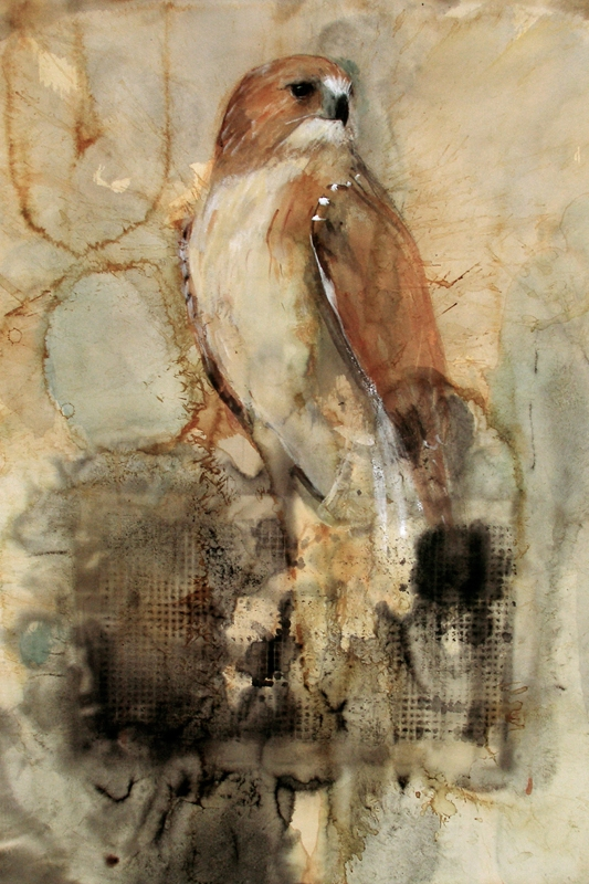 An Elevated Nature - Essay by Brett WilburCarmel Magazine, 2015