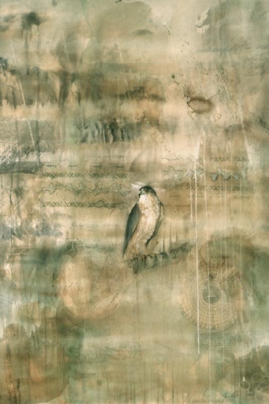 Jane Rosen and Joshua Hart at Braunstein/Quay Gallery - Exhibition review by Jakki Spicer Artweek, May 2008
