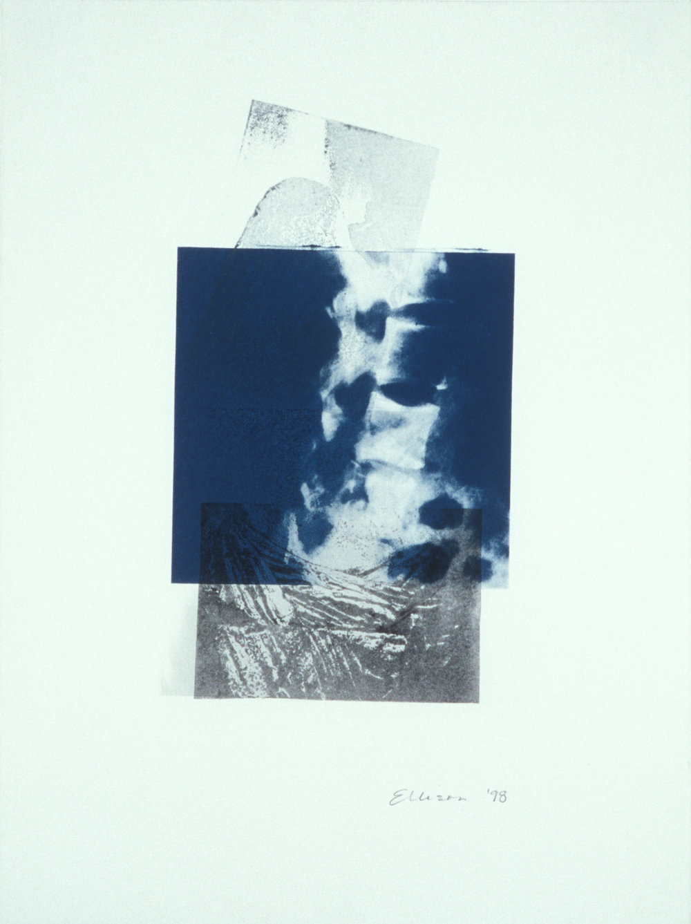 """""""Stand,"""" 2001, monotype with litho and transfer on Rives BFK, 30"""" x 22."""""""