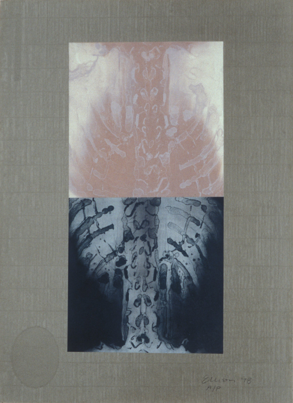 """""""Double Spine Pink,"""" 2001, monotype with lithograph chine collé on Roma paper, 28"""" x 20."""""""